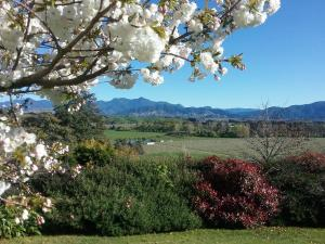 Omaka Heights Countrystay