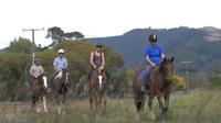 Horse Trek Farm Tour