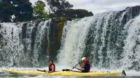 Haruru Falls Tour - 3 Hour Waterfall Kayaking