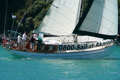 Akaroa Harbour Wildlife Cruise