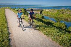 Self-Guided Biking Tour of Hawke's Bay Wineries