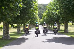 Half-Day Self-Guided Hawkes Bay Coastline and Wineries Cycling Tour