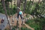 Adrenalin Forest Obstacle Course in Wellington