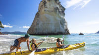 7-Day North Island Adventure Tour - Auckland to Wellington Return