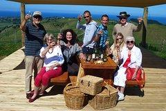 Napier Afternoon Wine Tour