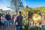 Hobbiton Movie Set: Early Bird Express Tour from Auckland