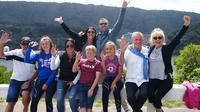 Private Shore Excursion: 7-11 Seats Explore Marlborough from Picton