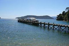 Full-Day Marlborough Catamaran Cruise with Wine Tour and Lunch