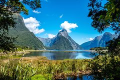 Milford Sound Heli Tour and Private Chef's Lunch