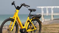 Guided Electric Bike Tour of Napier