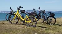 Full-Day Electric Bike Rental in Napier