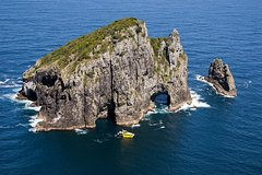 Private Full-Day Bay of Islands Tour From Auckland With 2-Hour Boat Cruise