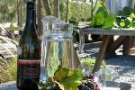 Martinborough Wine Tour