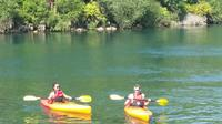 Kayak the Waikato River Taupo