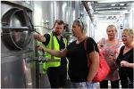Half-Day Ultimate Wine Tour in Napier