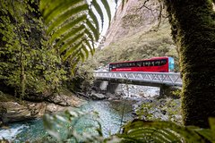 Milford Sound Coach & Scenic Cruise ex Te Anau with International Buffet Lunch