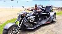 Bay of Islands Trike Tour from Paihia