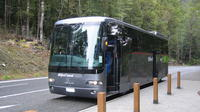 Milford Sound Day Trip and Cruise from Queenstown by Luxury Coach