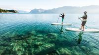 Half-Day Paddle Board Tour on Lake Wanaka