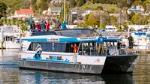 Cruise the remotest part of The Marlborough Sounds