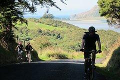 Otago Peninsula Bike Tour from Dunedin