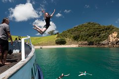 Half-Day Bay of Islands Cruise with Activities from Russell