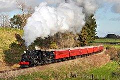 Picton Shore Excursion: Marlborough Flyer Train Tour