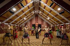 Evening Maori Cultural Performance and Geyser Experience from Rotorua