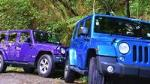 4-Hour Bay of Islands Private Jeep Forest Tour
