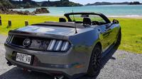 Half-Day Bay of Islands Private Mustang V8 Tour