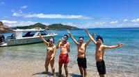 Bay of Islands Cruise & Island Tour - Snorkel, Hike, Swim, Paddleboard, Wildlife
