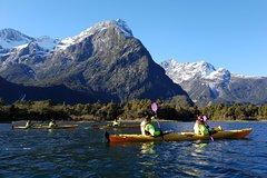 Sunriser Classic Sea Kayaking Trip from Milford Sound