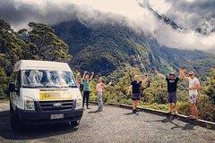 Day Safari Sea Kayaking Trip from Te Anau
