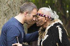 Ko Tane Maori Experience including Hangi Dinner
