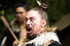 Ko Tane Maori Performance