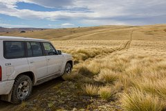 Remote, Wild & Unique 'Off the Beaten Track' Private 4WD Queenstown Expedition