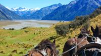 High Country Station Pioneering Clydesdale Experience & Scenic Day Tour from Christchurch