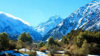 Aoraki-Mt Cook Tasman Glacier & Alpine Centre scenic day tour from Christchurch