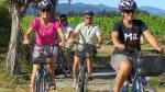 Deluxe Full-Day Marlborough Wine Region Guided Bike Tour