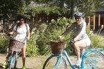 Half Day Guided with Half Day Self-Guided Marlborough Wine Region Bike Tour