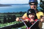Tauranga Shore Excursion: Rotorua & Tauranga Highlights Tour Gondola & Luge ride
