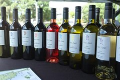Private Tour: Bay of Islands Tour with Wine Tasting