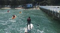 1 Hour Stand Up Paddleboard (SUP) Hire