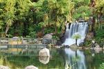 Shore Excursion: Te Puia and Rainbow Springs from Tauranga