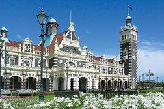 Shore Excursion: Dunedin Highlights Small-Group Tour